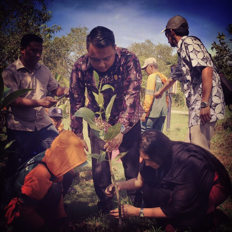 A tree in the name of Safecity planted in the mangroves of Surabaya.